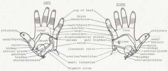 howtomassagehandreflexology.JPG